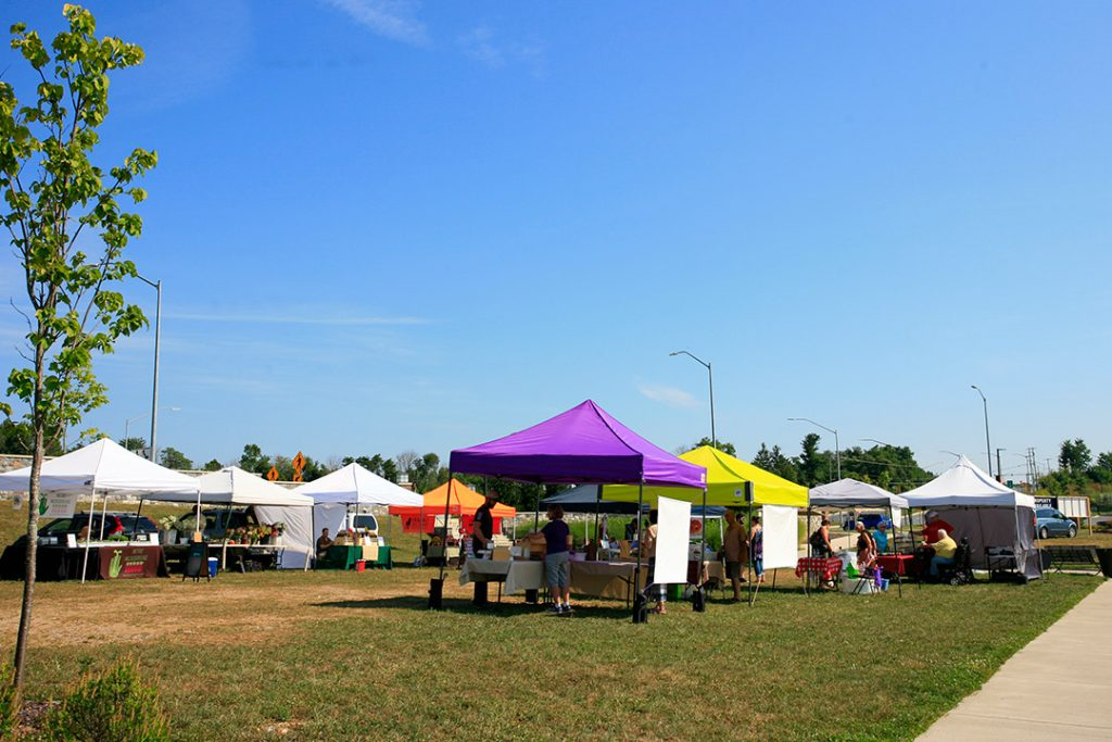 Clarksburg farmers market on a clear day.