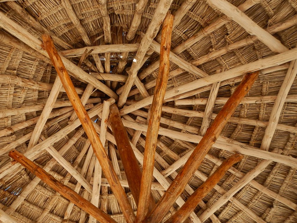 Interwoven fibers of a palapa umbrella.