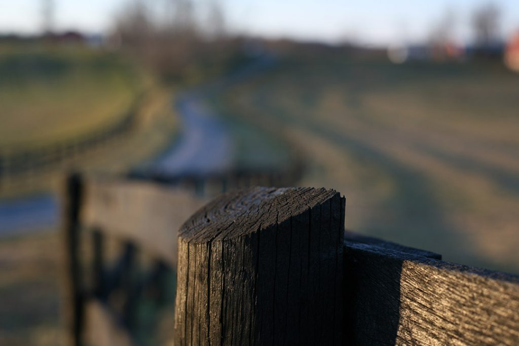 Barrier fence in focus with a path moving forward.